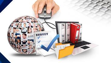 Data Entry of Business Surveys
